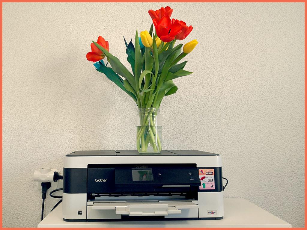 drukarka-nie-dziala